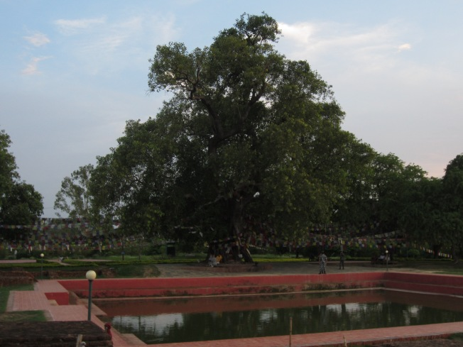 The pool where Buddha's mother is said to have bathed before giving birth