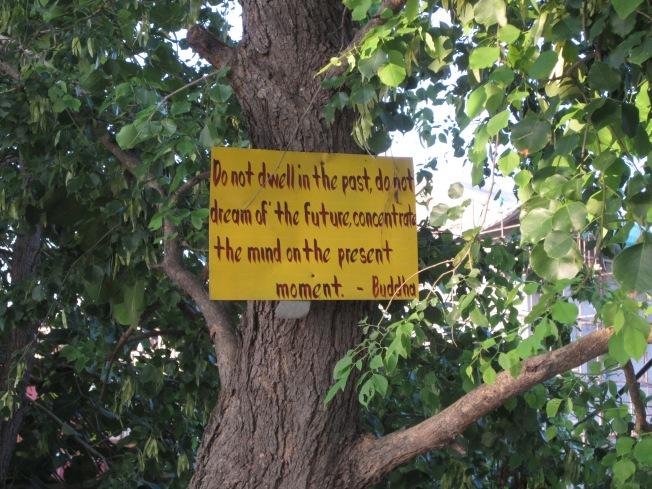 Buddhist Sayings 1