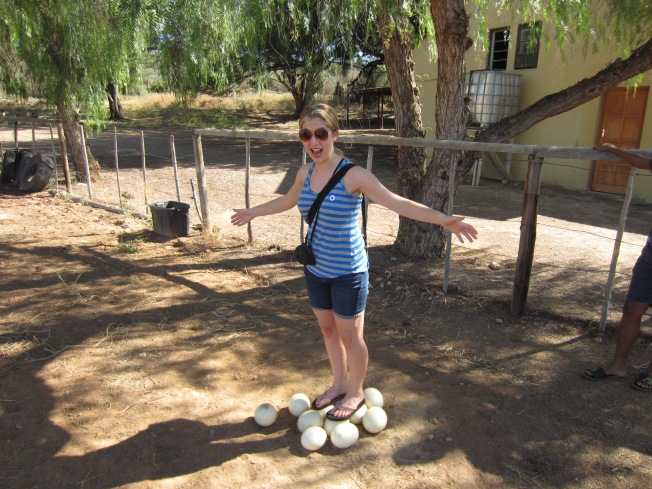 Strong Ostrich Eggs